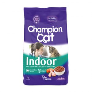 champion-cat-indoor